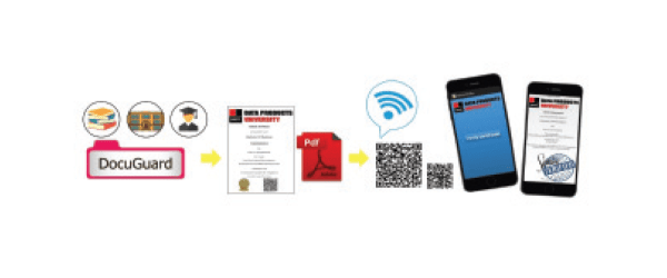 solution docuguard