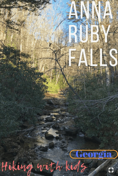Anna Ruby Falls with kids