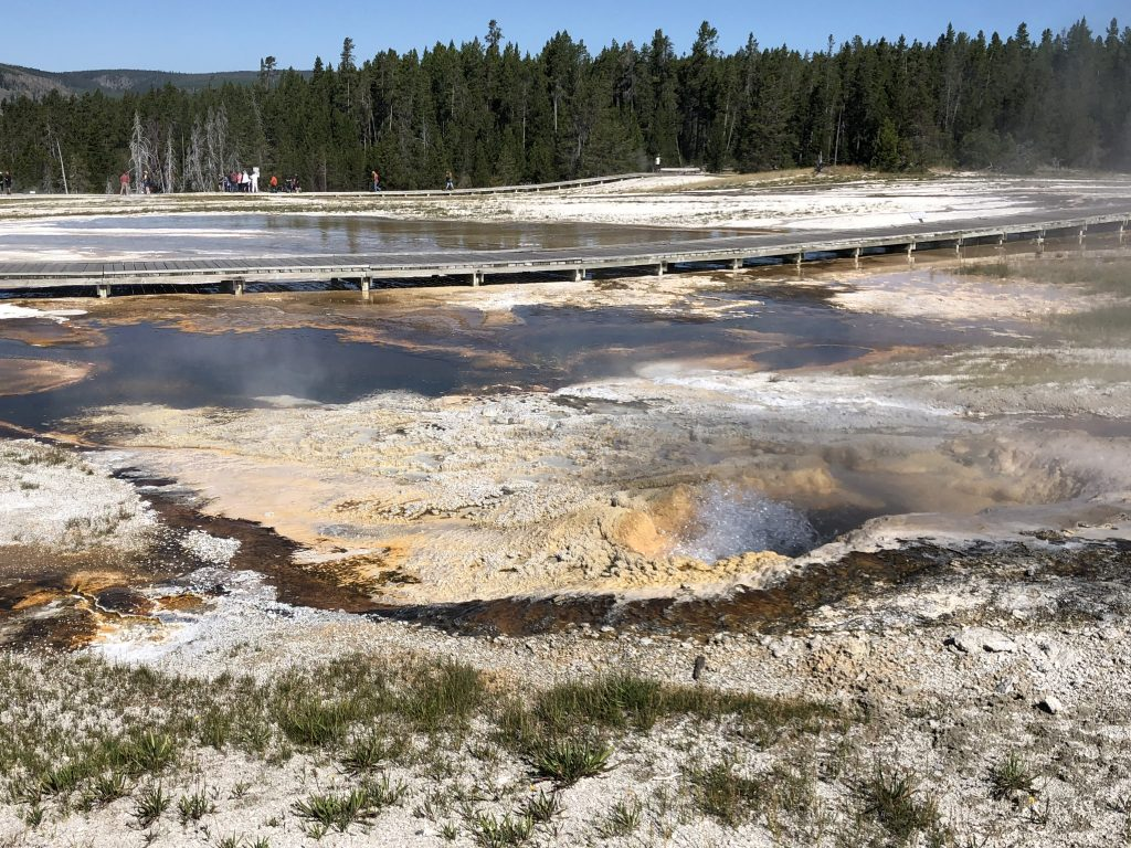 Upper geyser Basin 3