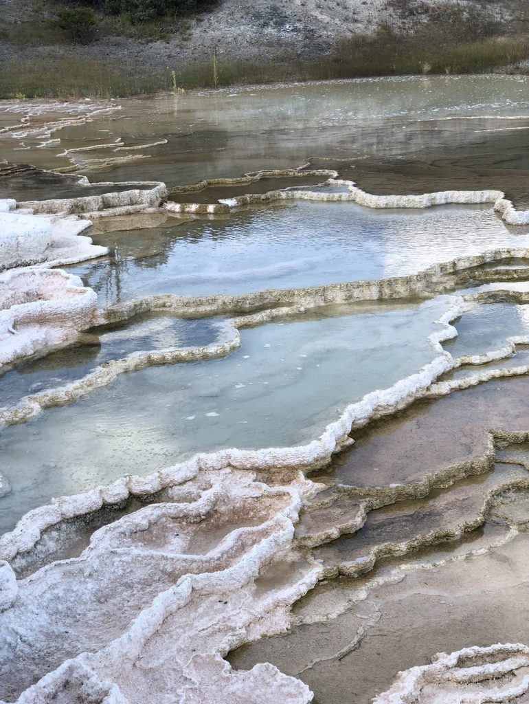 Mammoth Hot Springs 3