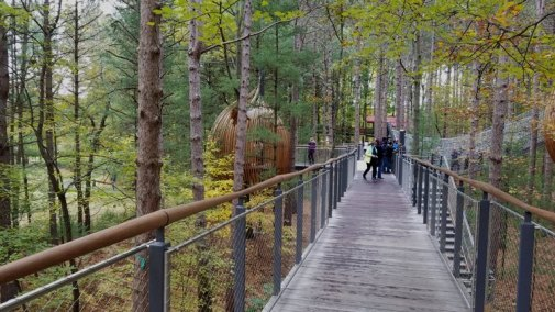 canopy things to do in michigan with kids
