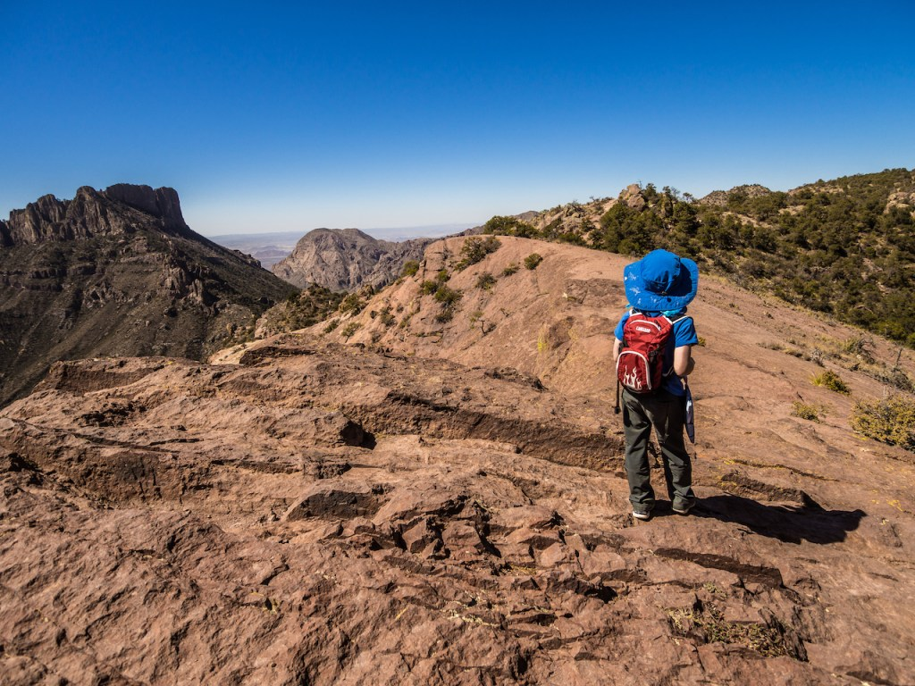 national park junior ranger big bend