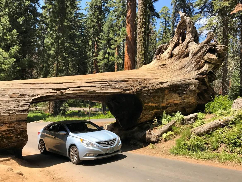 california national parks road trip seq