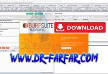 Burp Suite Professional v2.0 Full