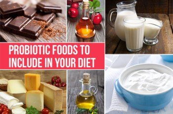 probiotic diet, dr oz probiotic diet, dr oz french diet, dr oz great diet showdown