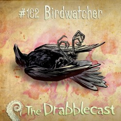 Cover for Drabblecast episode 162, Birdwatcher, by Elan Trinidad