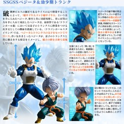 Dragon Ball Styling 5