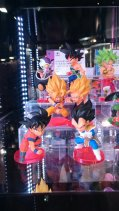wcf-dragon-ball-battle-of-saiyans-10