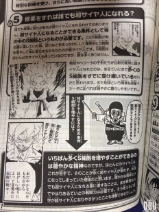 Les pages du guide Dragon Ball