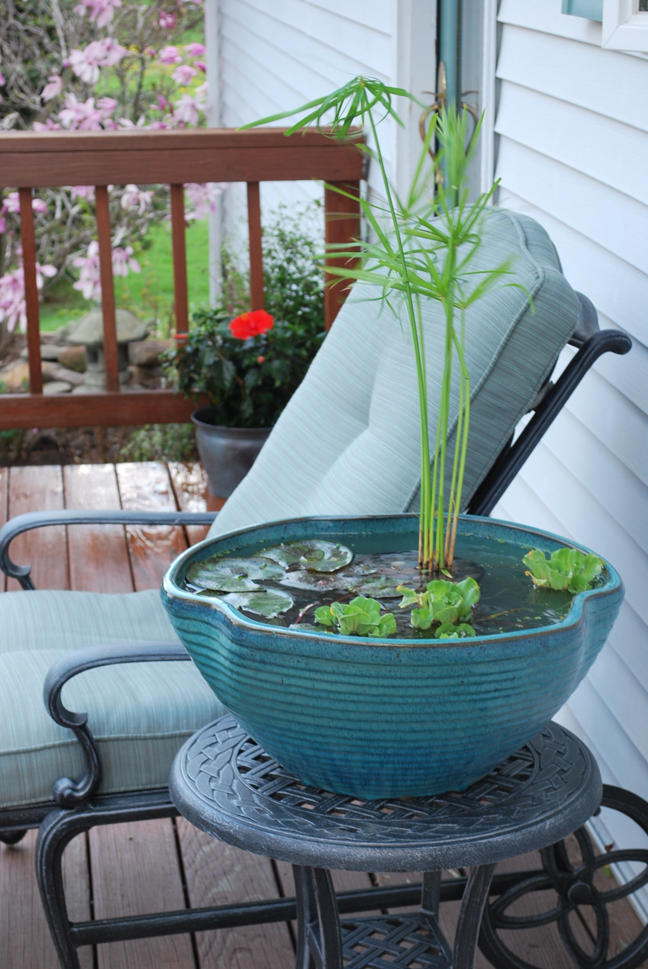 Floating Pond Plant Containers