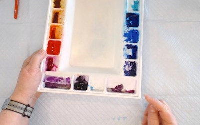 Dealing with Mold on a Watercolor Palette