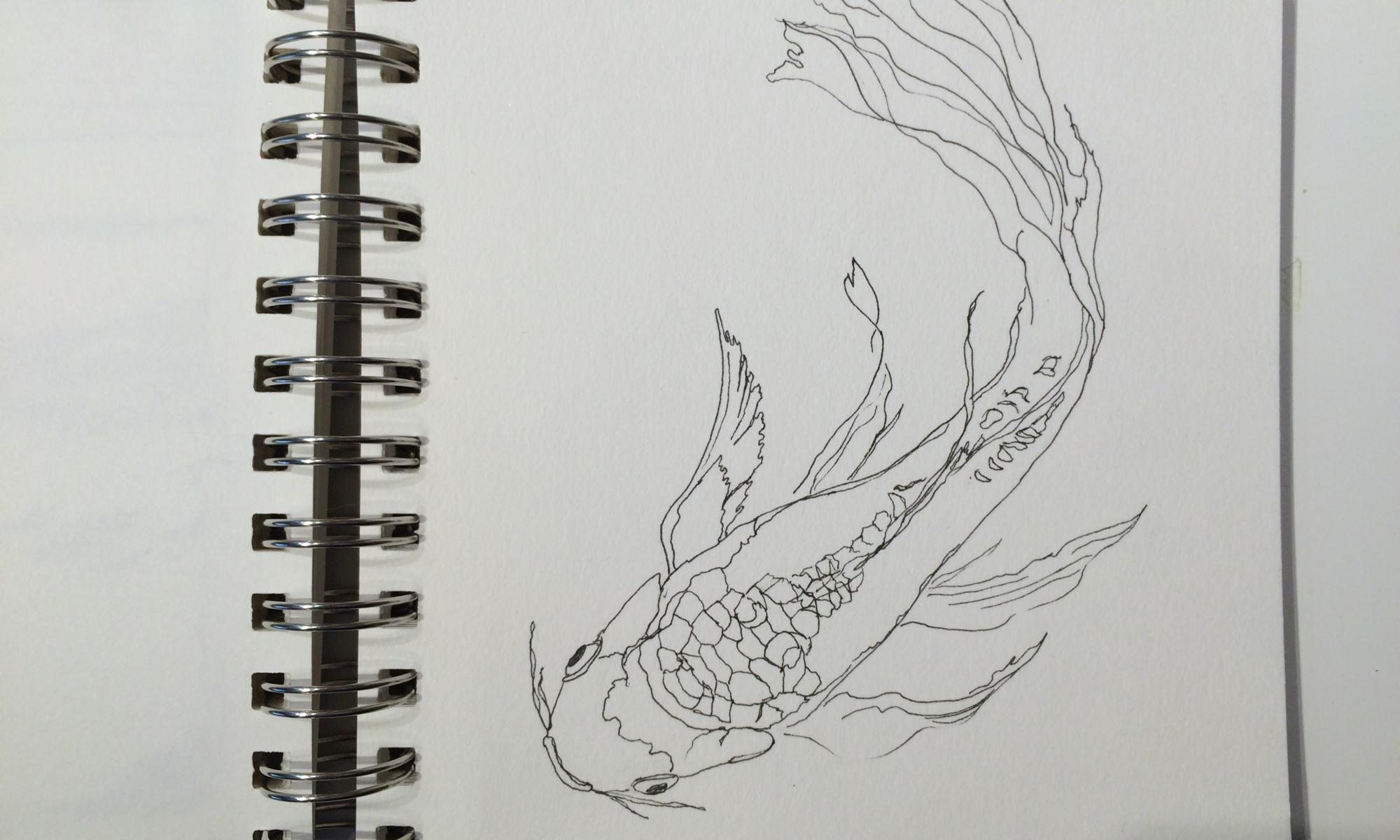 Butterfly koi sketch.