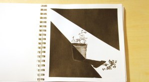 Ink drawing of potted plant with shadow.