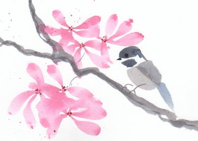 brush drawing of chickadee with crabapple blossoms