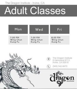martial arts lake forest