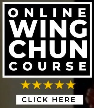 Online Wing Chun Course