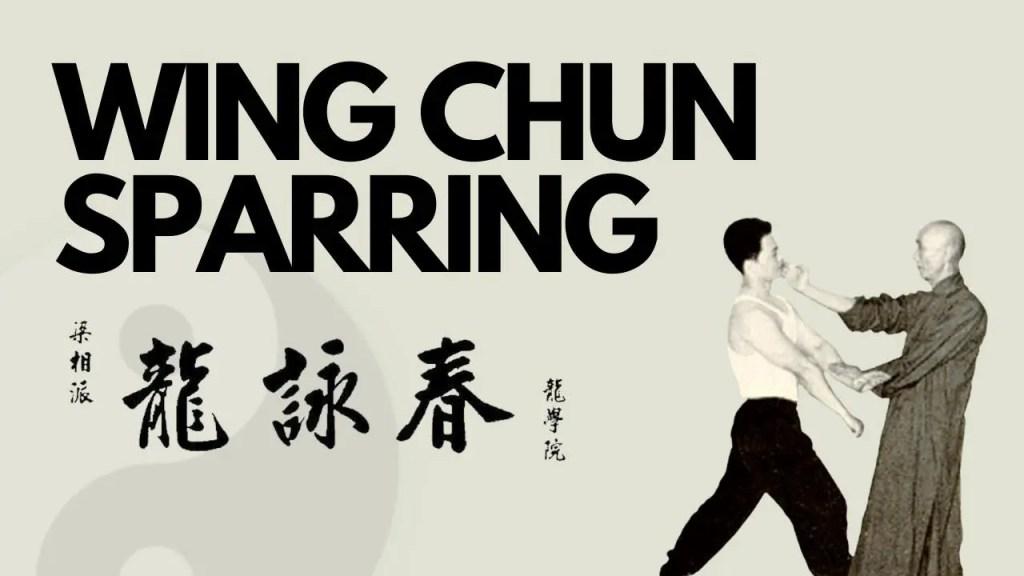 Wing Chun Sparring