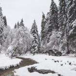 goodyear-winter-ziua-1-36