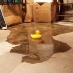 Company to fix Wet Basement in GTA