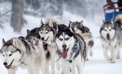 Wintervakantie Noorwegen