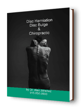 Disc Herniation Disc Bulge Chiropractic Ebook Cover
