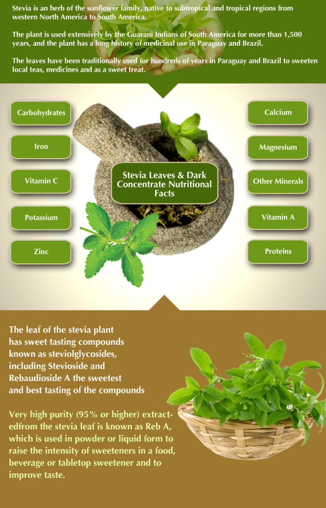 blog picture of stevia herb with infographic