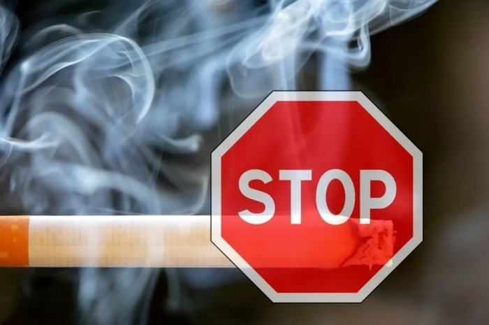 blog picture of cigarette with a stop sign in front of it