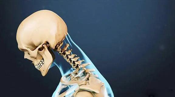 blog de imágenes del esqueleto del cuello mirando hacia abajo