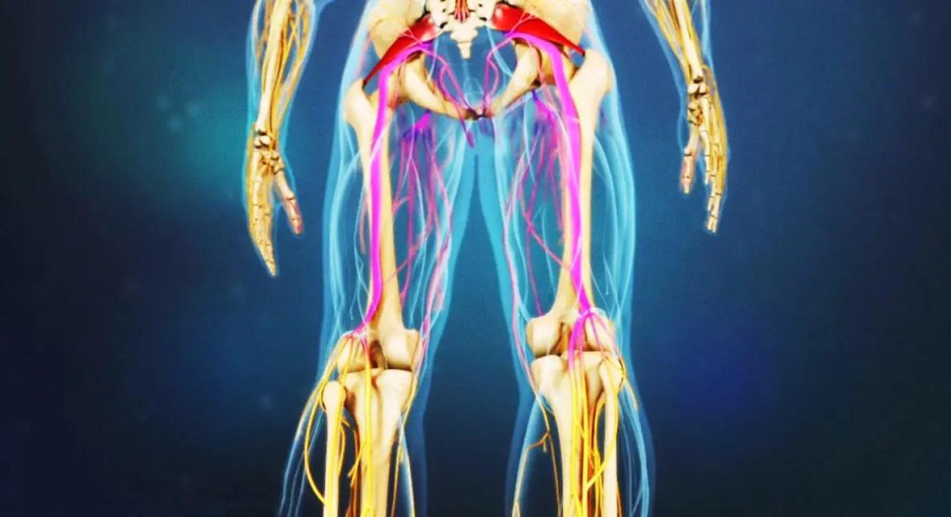boala articulației genunchiului w tratamentul conservator al coxartrozei articulației șoldului
