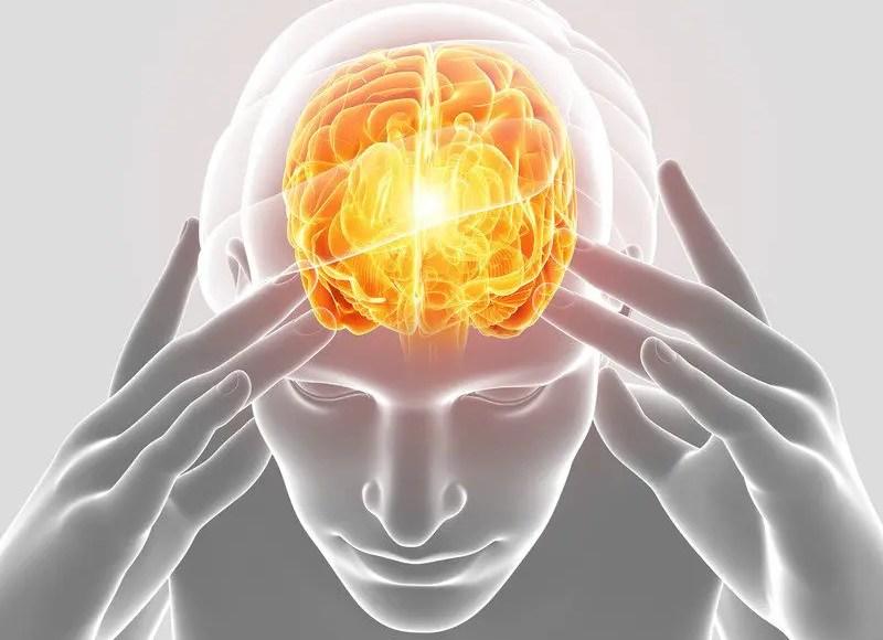 Головная боль модель человеческого мозга боль Эль-Пасо TX