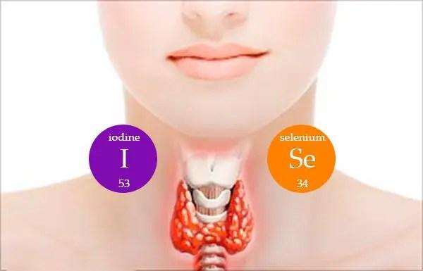 Factores ambientales detrás de la enfermedad tiroidea | Clínica de bienestar