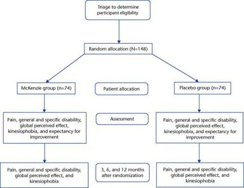 Figure 1 Flow Diagram of the Study