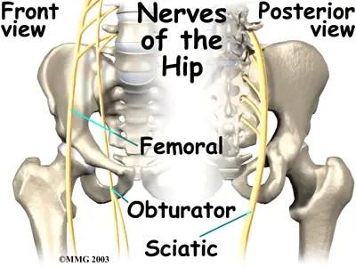 Del dolor nervioso reemplazo anterior después de cadera