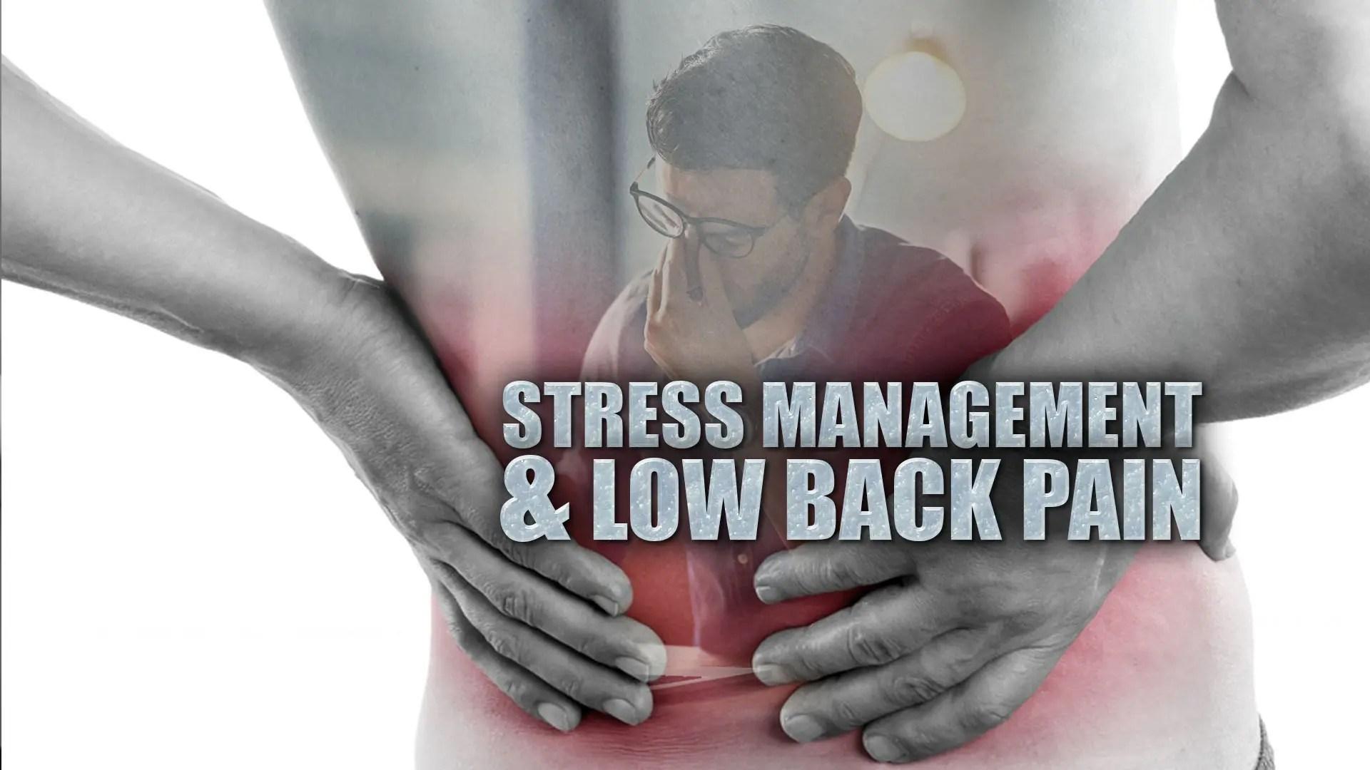Il dolore lombare cronico causa lipertensione.