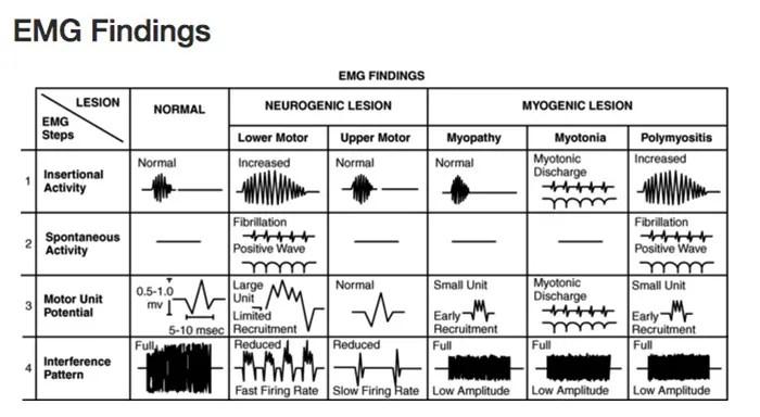 studi neurologici el paso tx.