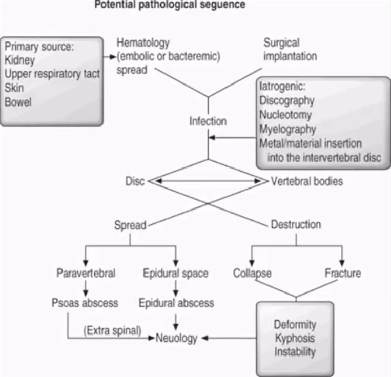 diagnostica per immagini di infezione spinale el paso, tx.