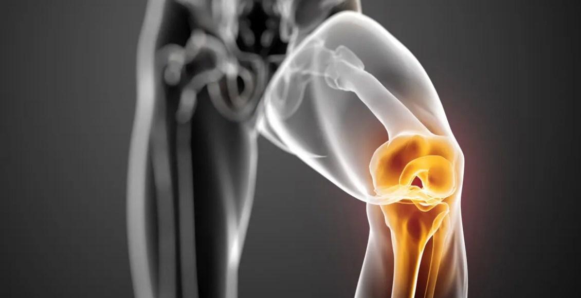 Immagine di copertina di Base Science of Human Knee Menisci | Chiropratico di El Paso, TX