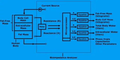 bioimpedance analysis el paso tx.