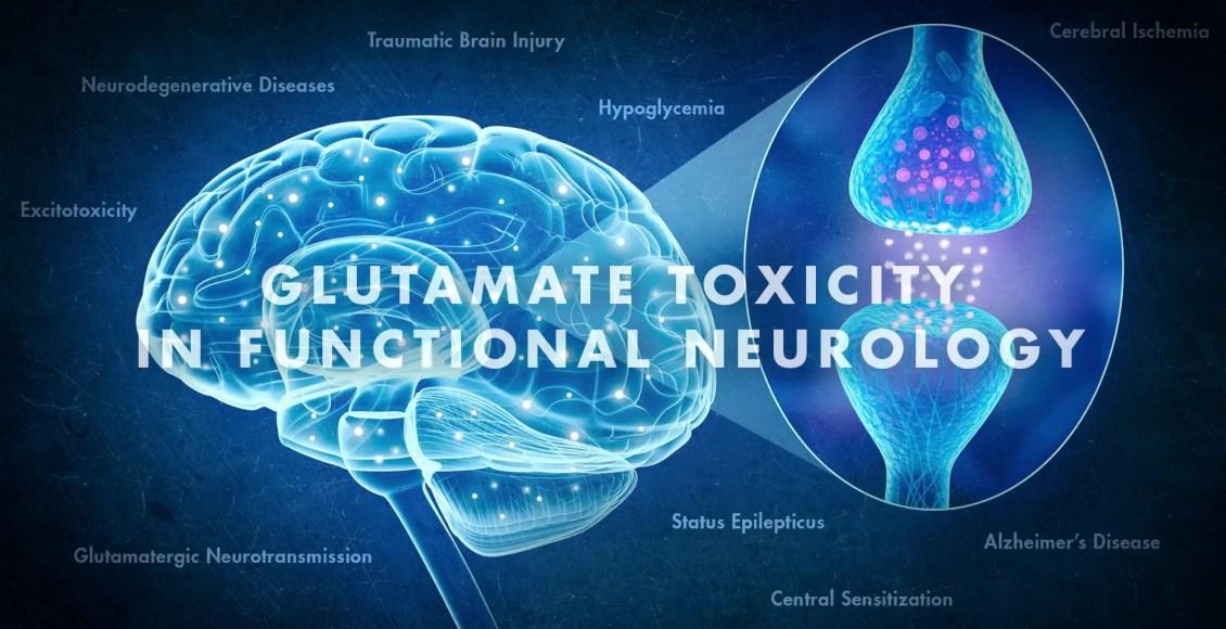 Glutamate Toxicity in Functional Neurology | El Paso, TX Chiropractor