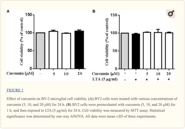 Figura 1 Effetto della curcumina sulla vitalità cellulare microgliale | Chiropratico El Paso, TX