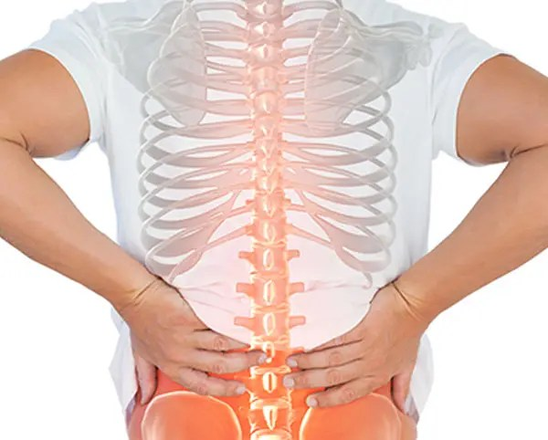 11860 Vista Del Sol, Ste. 128 Young Adult Degenerative Disc Disorder and Optimal Spine Health