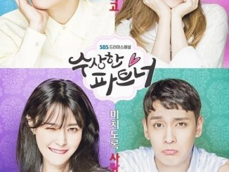 Download Drama Korea Suspicious Partner Subtitle Indonesia