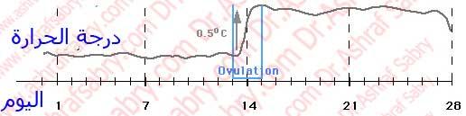 قياس درجة حرارة الجسم للكشف عن التبويض
