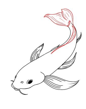 How To Draw Koi Fish Step 8