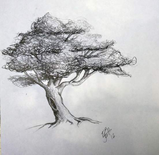 """That tree from 4th grade-or at least my drawing from memory. A part of me thinks, """"4th grade?! It couldn't have looked as good as this-but I did remember the bent trunk, gaps and branches in the leaves, the textured trunk and the hole in the trunk. Shows you how much I drew it-I remembered it more than two decades later! (how much more than two decades will remain a secret...)"""