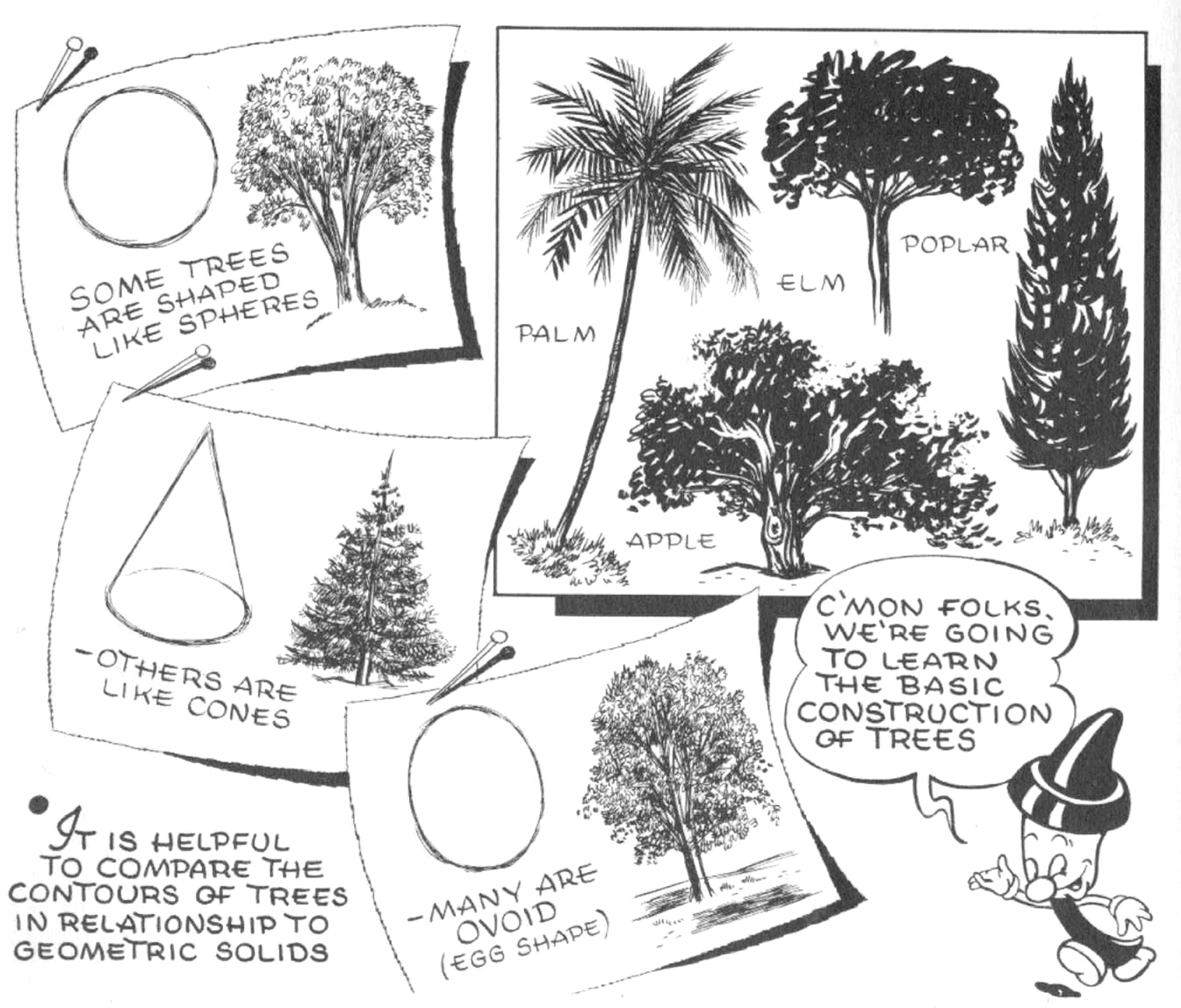 How To Draw Trees Bark Twigs Leaves And Foliage Drawing