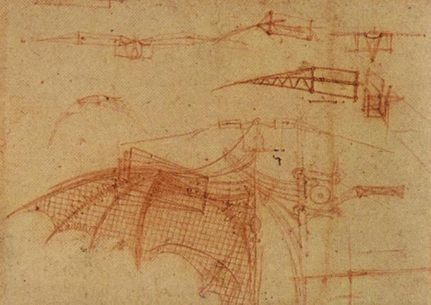 https://i1.wp.com/www.drawingsofleonardo.org/images/fly2.jpg