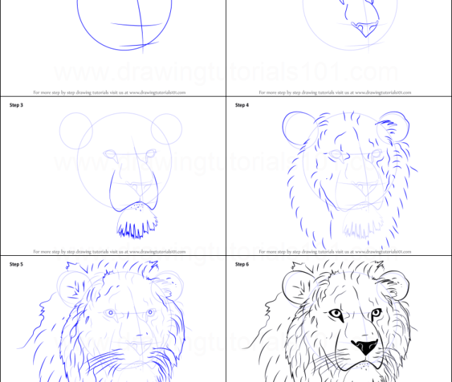 How To Draw Lion Head Printable Step By Step Drawing Sheet Drawingtutorials Com