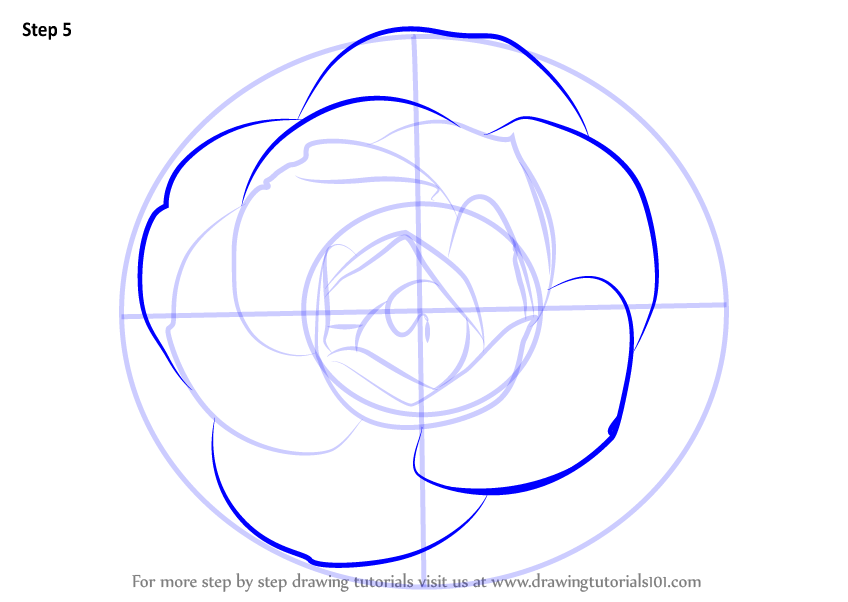 Learn How To Draw A Camellia Flower Camellia Step By