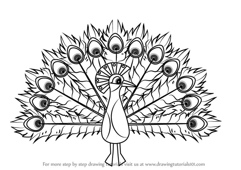 Learn How To Draw Peacock For Kids Animals For Kids Step By Step Drawing Tutorials